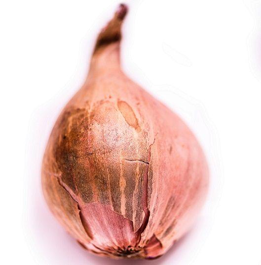 łupiny po cebuli