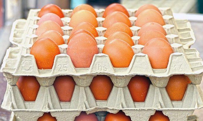 Opakowanie po jajkach