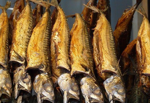 makrela ryba