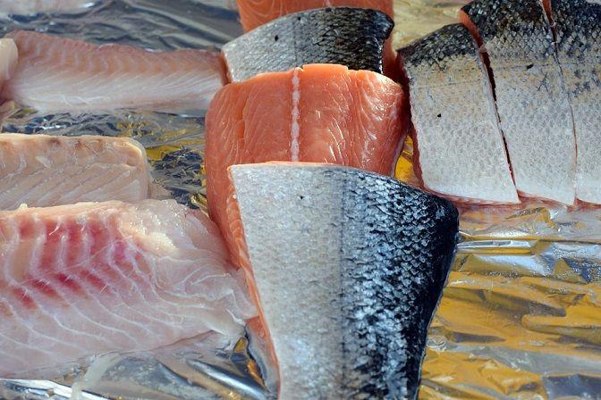 przechowywanie surowych ryb